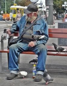 Feeding pigeons.jpg