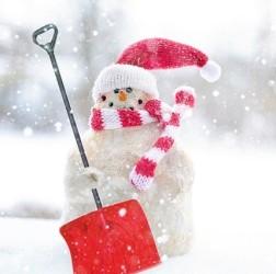 Snowman.shovel.jpg