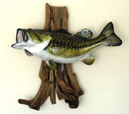 Fish mounted