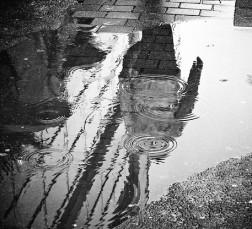 Wet 7