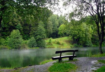 Bench by stream.jpg
