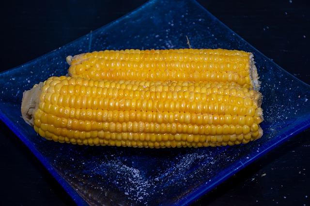 corn-4699903_640