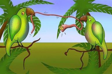 parrot-4710730_640